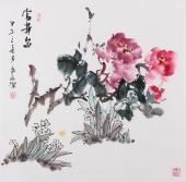 【已售】赵敏四尺斗方国画牡丹《富贵图》