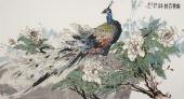 【已售】一级美术师冯志光六尺国画孔雀图《富贵吉祥》