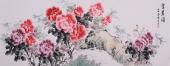 安徽美协会员云志六尺牡丹《富贵图》